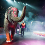 Discount+Code Ringling Brothers and Barnum & Bailey Presents Legends- Offer Code Ringling Brothers Circus